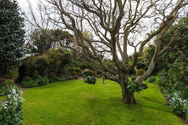 360 Spectacular A Virtual Tour Of Gardening Heaven