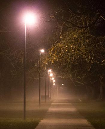 Lamp-lit path in Hagley Park on a foggy night